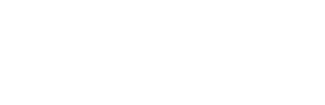 Community Foundation Arts & Culture Endowment Fund